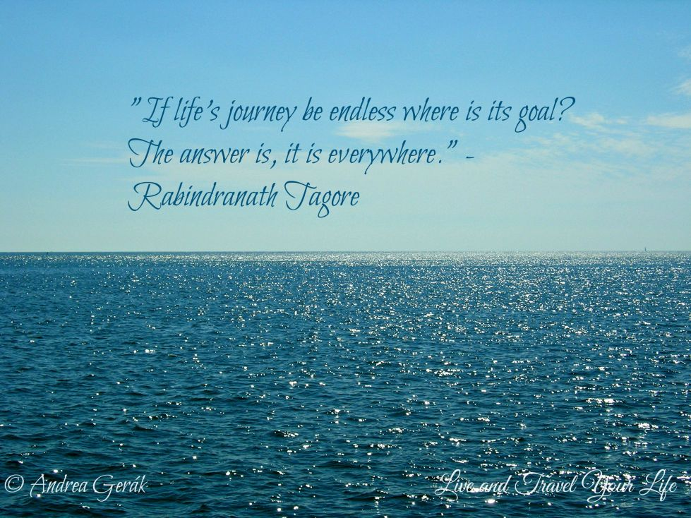 Quotes Life Journey Quote  Live And Travel Your Life